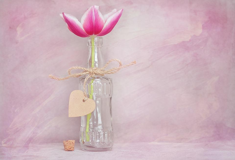 tulip-1261319_960_720