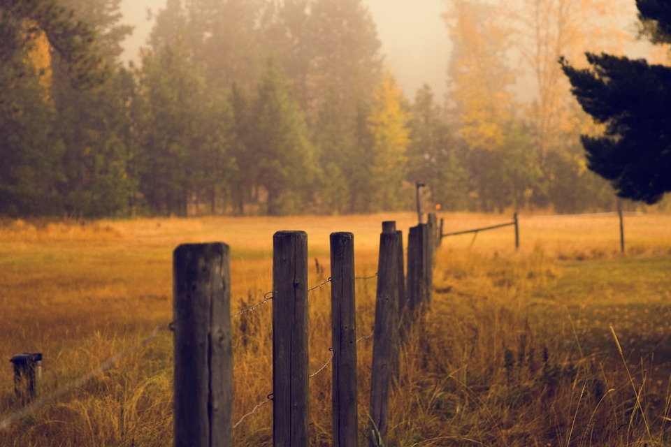 fence-983988_960_720